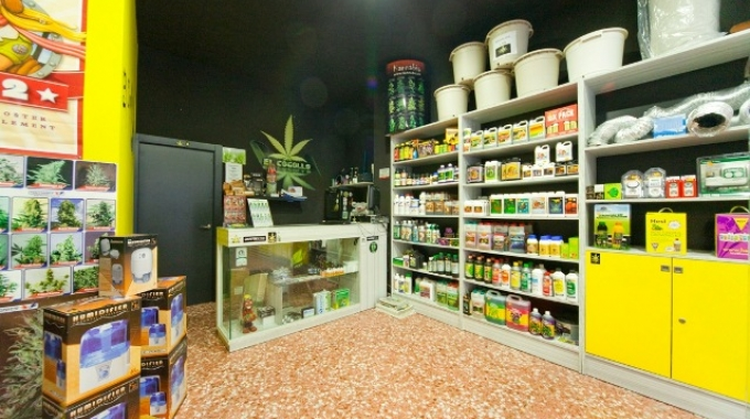 I growshop in Italia