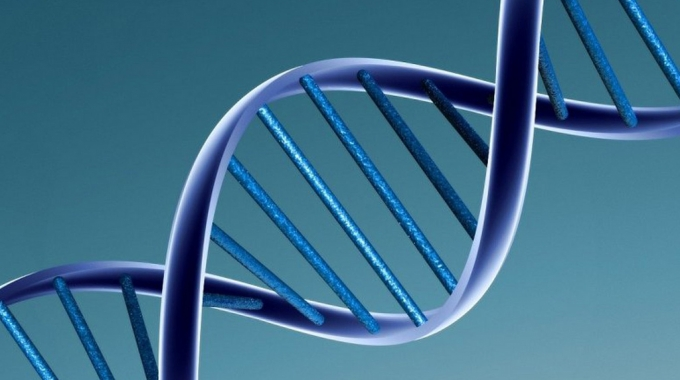 Il test facile del DNA genomico