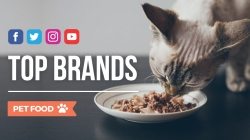 Pet Food: i brand più social