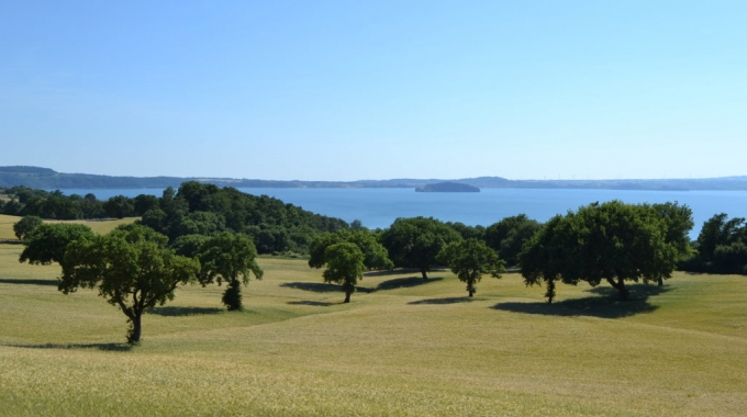 5th European conference on agroforestry