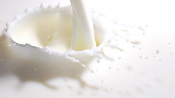 L'Italia batte la Francia al World Milk Day