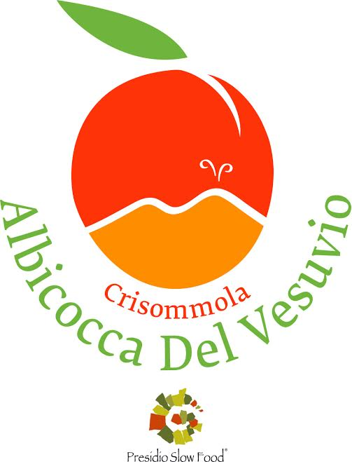 Il Presidio Slow Food dell'Albicocca del Vesuvio